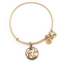 Aquarius Charm Bracelet | Alex and Ani