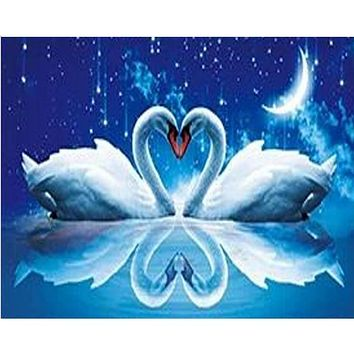 5D Diamond Painting Swan Heart Kit