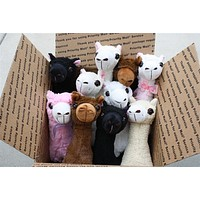 """PacaBuddies"" Stuffed Alpaca Toys"