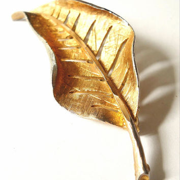 Gold Tone Leaf Brooch Signed J.S., Brushed Texture, Curled, Vintage 3""