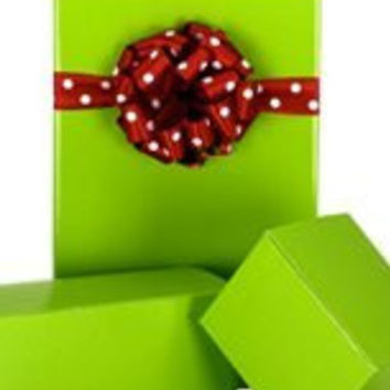 New Trendy Gloss Solid BRIGHT LIME Gift Wrap Wrapping Paper 16 Foot Roll