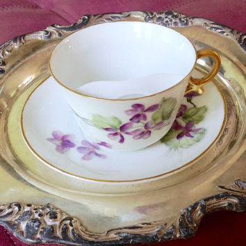 Antique Mustache Cup and Saucer T&V Limoges France Hand Painted Violets Teacup