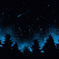 Shooting Star - Glow in the Dark Star Poster