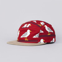 Flatspot - Only NY Seagulls 5 Panel Cap Red / Tan