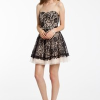 Two Tone Lace with Tulle