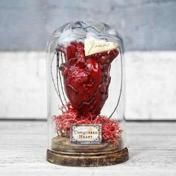 Anatomical Heart in Glass Dome Display - Miniature - Gothic Decor - Odd Gift