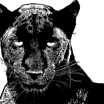 black panther wild cats png Digital Image Download jungle animal art graphics abstract impressionist illustration