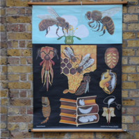 Elemental antique vintage retro furniture lighting seating : curiosities : Vintage Honey Bee Chart
