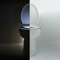 You've Got to Pee to Believe: A Motion-Activated Toilet Night Light