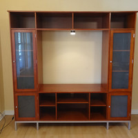 contemporary style entertainment center