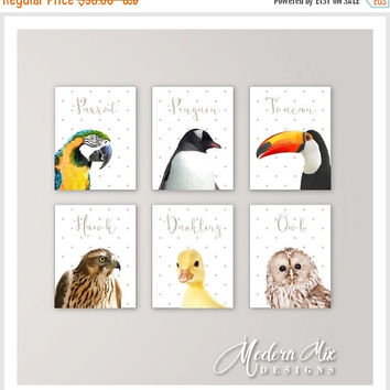 Animal Nursery Decor Zoo Nursery Wall Art Baby Animal Nursery Prints Baby Parrot Penguin Toucan Hawk Duckling Owl Set of 6 birds
