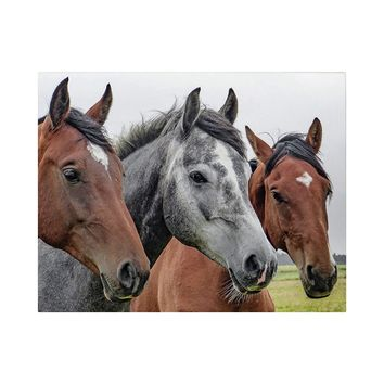Horses Canvas Prints Wall Art Framed Decor Living Room Bedroom Small
