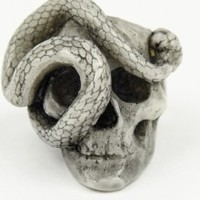 Grey Skull & Snake Ring | NOT JUST A LABEL