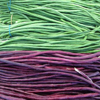 10 Yard-long Bean Chinese Red Noodle Aka Pole Long Bean Fruit Vegetables Seeds Organic Non GMO| Home Garden Grow Plant