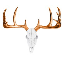 Large Deer Head Skull | Faux Taxidermy | White + Bronze Antlers Resin