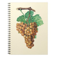 """The grapes """"terret blanc"""", color : buttercream notebook"""