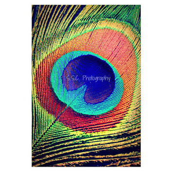 "Peacock Feather. ""The Eye"" Bright.  Abstract art. Colorful photography. Peacock art. Vibrant home decor. Orange. Blue. Teal. Green."