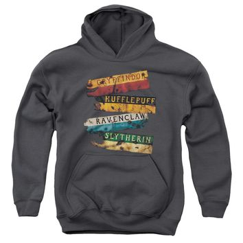 Harry Potter - Burnt Banners Youth Pull Over Hoodie
