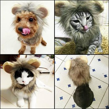 Pet Cat Costume Lion Mane Wig Hat for Dog Cat Halloween Special Lion Small Ears Cat Wig Hat Totoro Turns Into Cat Tidy Clothes
