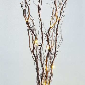 Lightshare™ 36Inch 16LED Natural Twig Branch Light,Battery Powered,Brown Branch,Warm White Light for Home Decoration