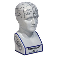 "12"" Phrenology Head Figurine, White, Busts, Statues & Statuettes"