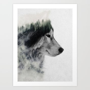 Wolf Stare Art Print by Andreas Lie