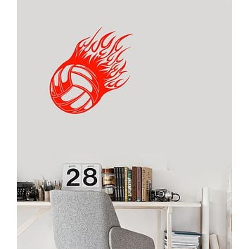 Vinyl Wall Decal Volleyball Ball Sport Game Flames Stickers (4027ig)
