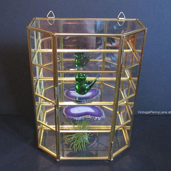 Vintage Mirrored Brass Glass Curio Display Case Shelf Box / Wall Hanging