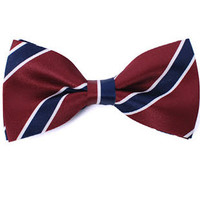 Tok Tok Designs Baby Bow Tie for 14 Months or Up (BK121)
