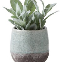 Corsica Crackle Round Pot Display by Torre & Tagus at Gilt