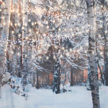 Snowy Trees With Glimmering String Lights Backdrop 6x8 - LCTCSL344 - LAST CALL