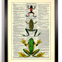 It's A Frogs Life, Vintage Dictionary Print, 8 x 10