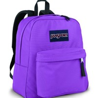 JanSport Classics Series Spring Break Backpack (Forge Grey)