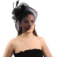 Big Fancy Stitch Veil Floral Feathers Headband Fascinator Cocktail Hat Cap Black