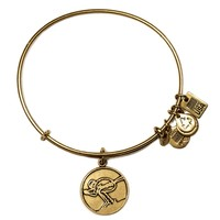 Team USA Skiing Charm Bangle