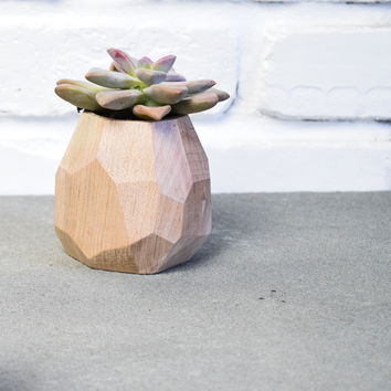 W/S Faceted Geometric Succulent Planter - Maple