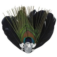 Peacock Feather Clip with Rhinestones | Shop Hobby Lobby