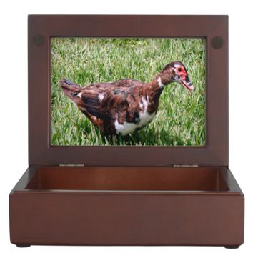 Muscovy Duck Keepsake Box