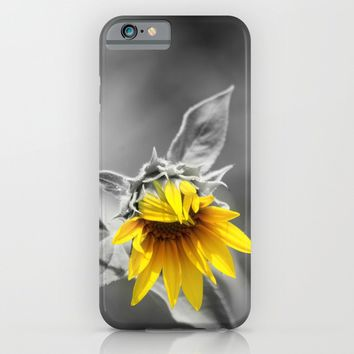 Sunflower iPhone & iPod Case by Cinema4design