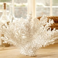 Faux Spike Coral, White
