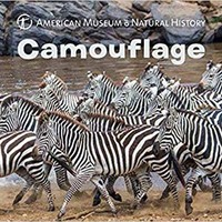 American Museum of Natural History Camouflage Board Book