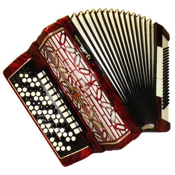 German Barcarole Professional, 120 Bass, 14 Registers, Piano Accordion Instrument, 520