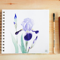 Iris flowers painting art print, purple flower art, botanical watercolor, spring garden decor