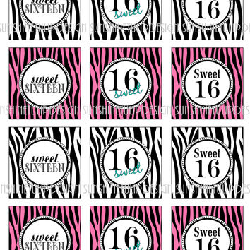 Sweet 16 Birthday Cupcake Toppers, Sticker Labels & Party Favor Tags