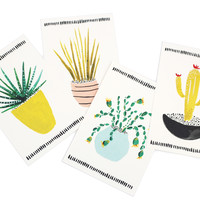 Cactus Postcard Set of 8