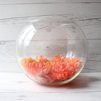 Vintage Large Round Terrarium Glass Bowl or Fish Bowl | Succulent Planter