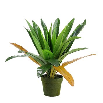 """22"""" Decorative Potted Artificial Green and Brown Bird Nest Fern Plant"""