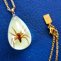 Glow In the Dark REAL Spider Long Necklace