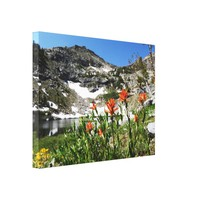 Wrapped Canvas Fine Art Mountains, Wildflowers