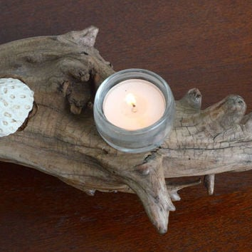 Divine Driftwood Candle Holder with Coral Accents for the Dining or Coffee Table